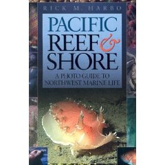 Pacific Reef and Shore