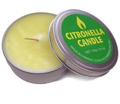 Candle - Citronella